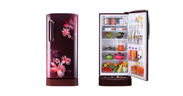 You are currently viewing 10 Best Refrigerator Under 20000 In India (2021)